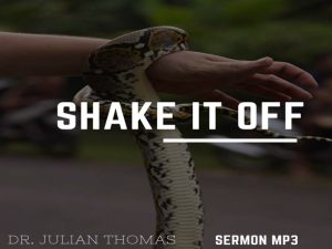 Shake it Off Image
