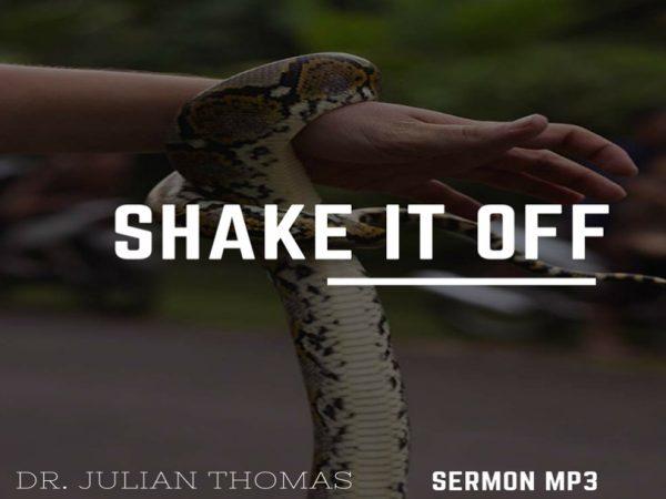 Shake it Off Image